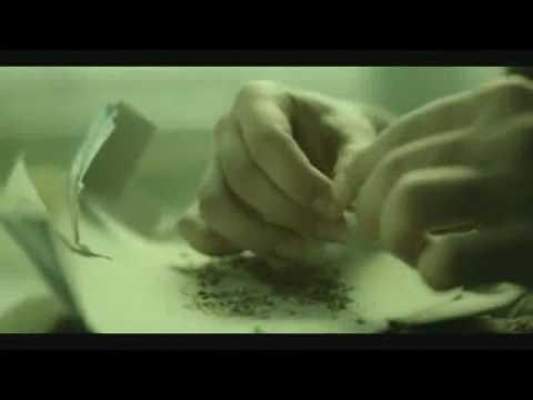 Drug Abuse Statistics – The Truth