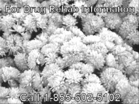 Top Government Based Drug Addiction Facts Near to Fond du Lac