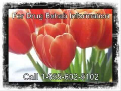 Revolutionary Drug Addiction Facts In Pasadena